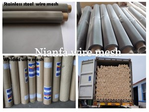 galvanized wire  mesh& stainless steel wire mesh