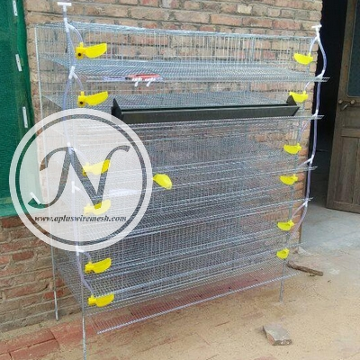 quail cage (1)