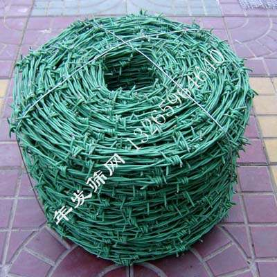 包塑刺线 (24)